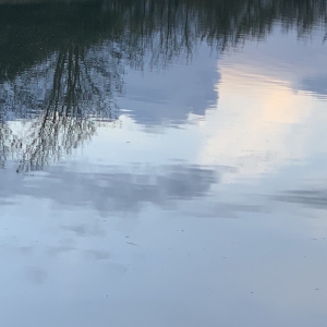 Sillver blue reflections inspirational image