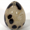 Speckledy Kelly Egg Hand Made Glass by Adam Aaronson